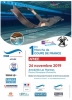 1st Round - French Apnea National Cup (STA, DYN, DNF & 16X50m) - Amnéville-Les-Thermes, France