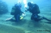 Scientific Diving Training Course