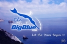 Authentic Big Blue