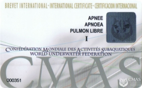 Apnoea Diver One Star Training Programme
