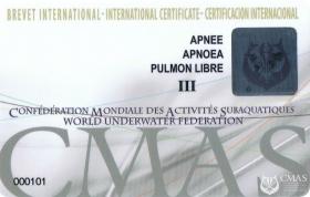 Apnoea Diver Three Star Training Programme