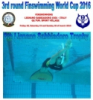 Finswimming World Cup Round-Swimming Pool – VIII Trophee