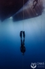 CMAS & Vertical Blue Unite Together to Deliver the History's first Freediving World Series