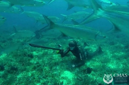 Spearfishing Comission are Planning an Acreditation Course of Cmas SF Technical Delegate