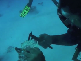 6th International Course of Scientific Diving FMAS-CMAS Zone America