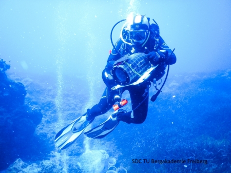 Scientific Diving Training Course and Field Trip