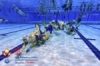 20th Underwater Hockey World Championship